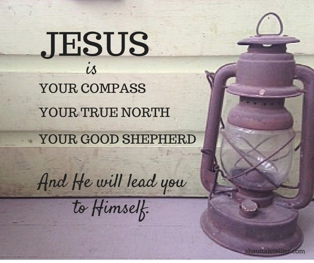 He is your compass, your True North, your guiding Good Shepherd, and He will lead you to Himself. (1)